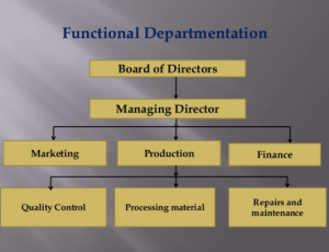 Departmentation | Meaning | Bases | Relative Merits & Demerits